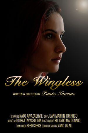 The Wingless Poster